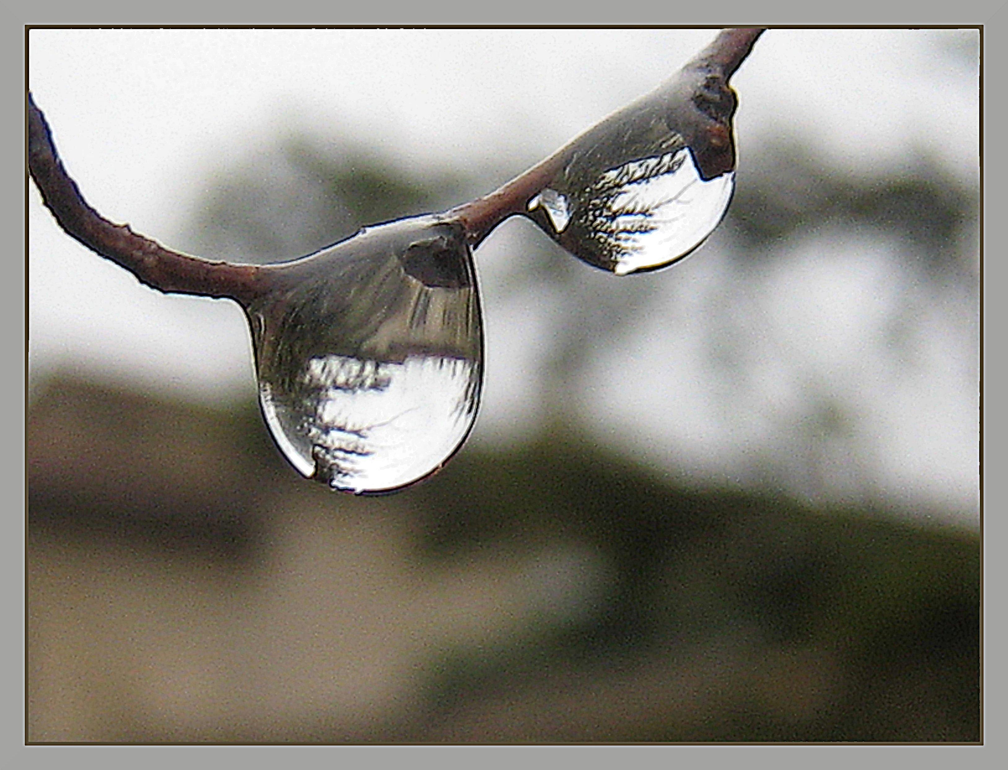 Apr s l 39 averse le petit blog de mamicha for Le miroir casse
